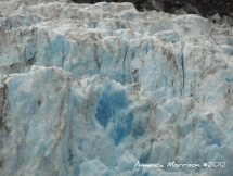 Holgate Glacier near Seward, AK.