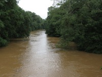 Sarapiqui River - high water