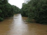 Sarapiqui River - high water